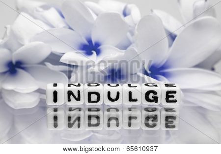 Indulge Blue Theme