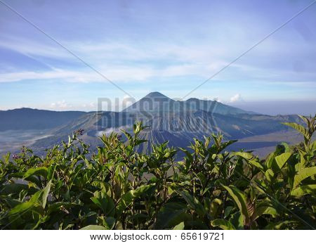 Mount in Java