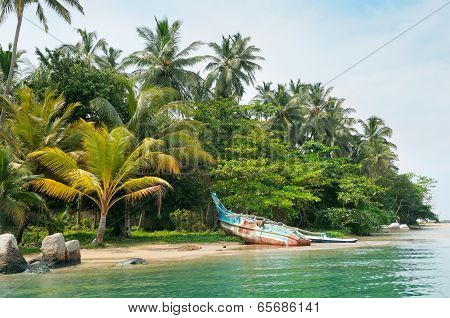 Lake, Tropical Palms And  Boat