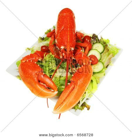 Cooked Lobster On Salad