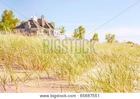 Dune grasses with beach house