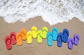 picture of sunny beach  - Color flip flops on sandy beach by the ocean in sunny day - JPG