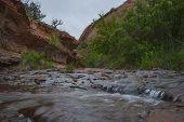 stock photo of negro  - Creek along the Negro Bill Canyon trail leading towards morning glory bridge - JPG