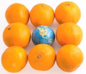 Oranges  With A Toy Globe