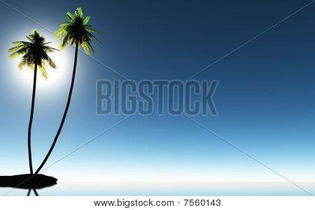 Tropic palm trees and blue sky