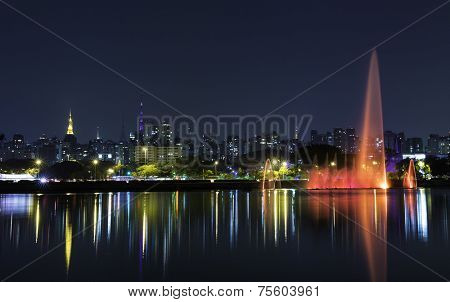 Sao Paulo city at night, Brazil