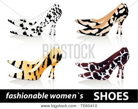 fashionable women`s shoes