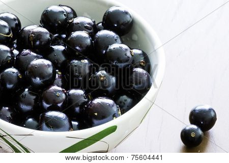 Jabuticaba, tropical fruit native of Brazil.