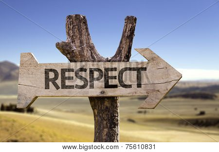 Respect wooden sign with a desert background