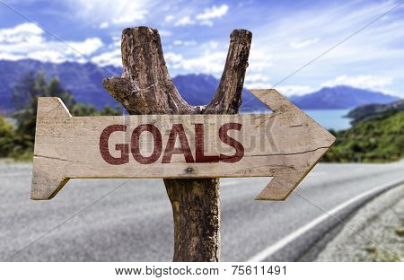 Goals wooden sign with a street background