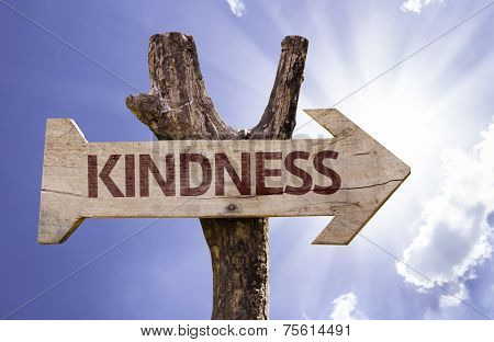 Kindness wooden sign on a beautiful day