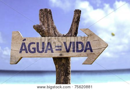 Water = Life (In Portuguese) wooden sign with a beach on background