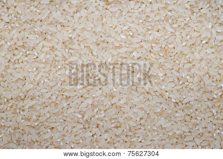 Food Background Of White Round Rice