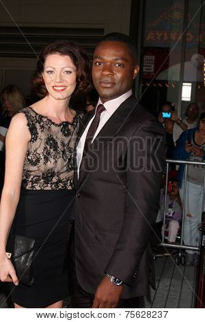 LOS ANGELES - NOV 6:  Jessica Oyelowo, David Oyelowo at the AFI FEST 2014 Screening Of