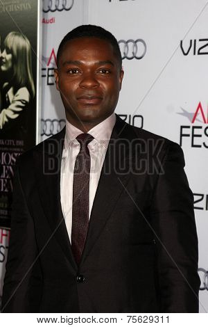 LOS ANGELES - NOV 6:  David Oyelowo at the AFI FEST 2014 Screening Of