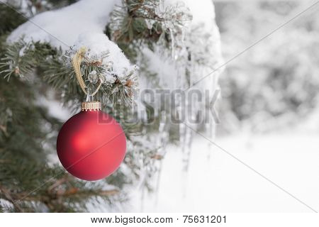 Red Christmas ornament hanging on snow covered spruce tree outside
