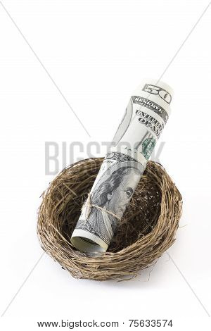 Roll Of Dollars Inside A Bird's Nest