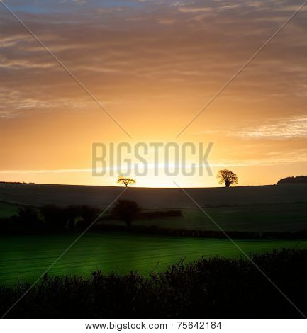 Rural Morning Sunrise Over Fields