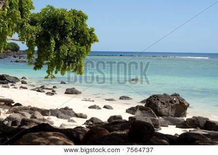 rocky tropical baech
