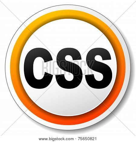 Css Style Icon