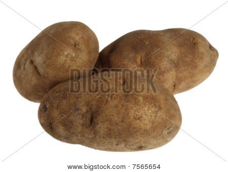 Russet Potatoes Over White