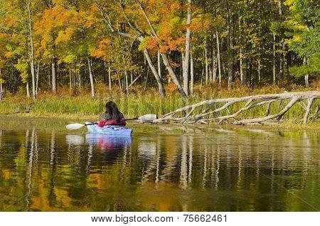 Autumn Beauty From The Kayak