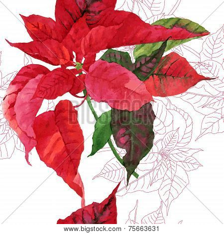Seamless pattern  with poinsettia plant-03