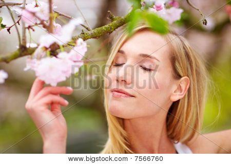 Woman Enjoying Cherry Blossoms
