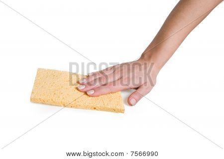 Hand And Sponge Rag