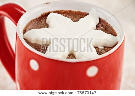 Hot Cocoa With Whip Cream