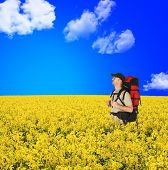 Happy Backpackers In Flowers Field