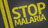 stock photo of malaria parasite  - Stop Malaria written on the road - JPG