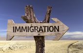 picture of deportation  - Immigration wooden sign with a desert background - JPG