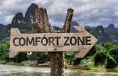 image of stagnation  - Comfort Zone wooden sign with a forest background - JPG
