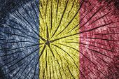 stock photo of chad  - Flag of Chad on cracked wooden texture - JPG