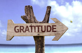 pic of tribute  - Gratitude wooden sign with a beach on background - JPG