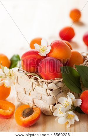 baskets with fresh ripe apricots