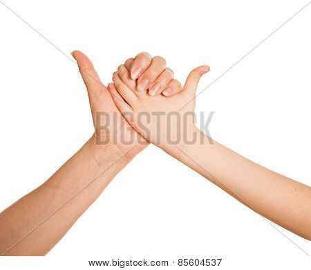 Adult's hand and child's hand holding together