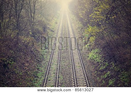 Train tracks with the natural landscape and sunset
