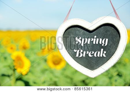 Spring break concept. Blackboard in shape of heart on sunflower field background