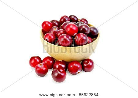 Cranberries ripe in wooden bowl