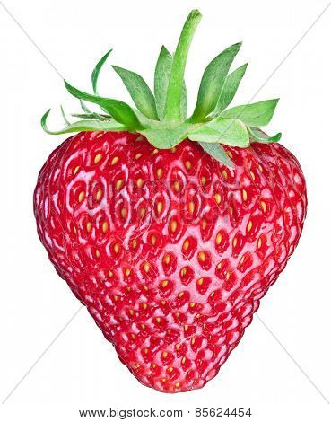One rich strawberry fruit isolated on a white background. File contains clipping paths.