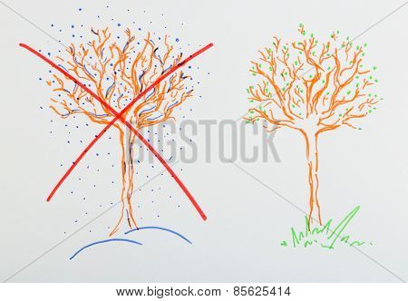 Figure of tree in winter and spring  on paper