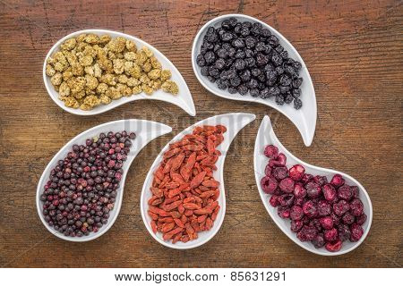 dried superfruit collection - goji berry, white mulberry, blueberry, elderberry and cheery in teardrop shaped bowls against rustic wood