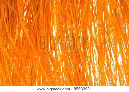 Yellow Dry Grass Background