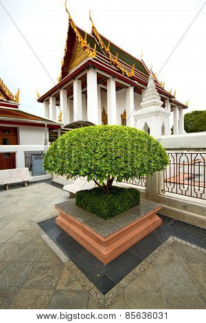 Pavement Gold    Temple   In   Bangkok  Thailand Incision Of The Plant