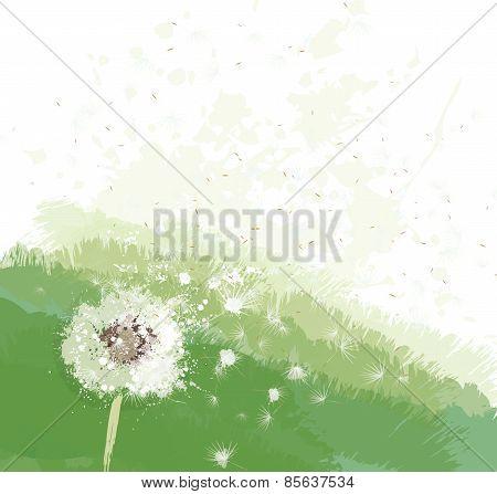 Vector White Dandelion On Spring Background.
