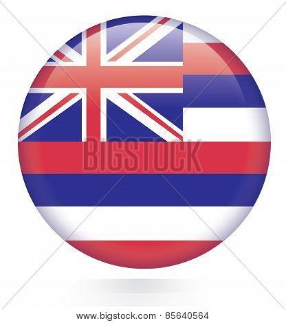 Hawaii flag button