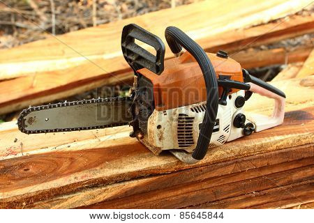 Chainsaw on the Woods