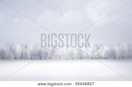 Winter snow landscape.